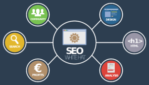 Read more about the article SEO for Dummies: How to Start Using SEO
